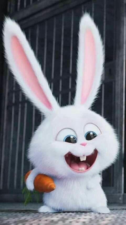 Cute Wallapapers Hd Bunny Wallpaper Hd Cute Wallpapers Cute Bunny Cartoon
