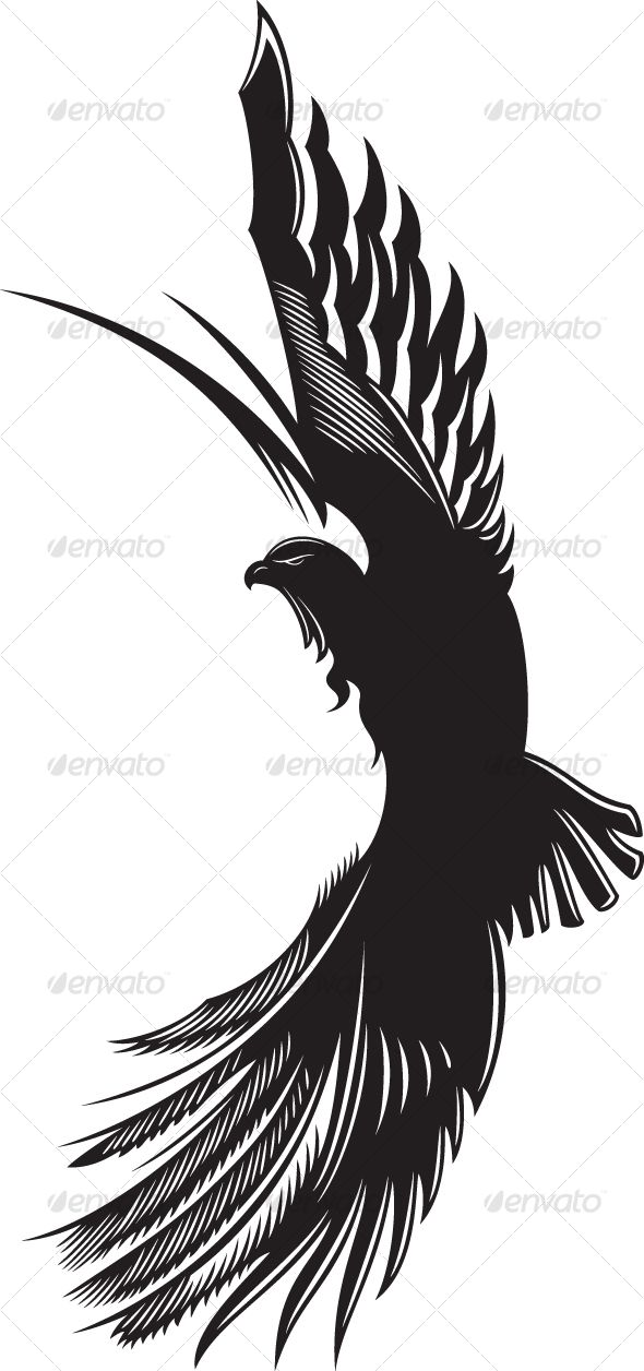 Making this into a logo by offsetting the eagle to the right on the side of a circle would be awesome!! !!Vectors - eagle | GraphicRiver