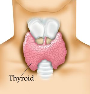 answers to 5 common thyroid questions