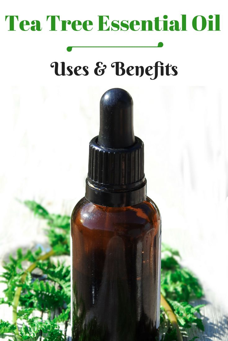 Tea tree essential oil has antibacterial properties that treats Acne, Dandruff, etc. Read Tea Tree essential oil Uses, Benefits & effective Diy recipes. #teatreeoil #essentialoils #skincare #acne #beautyblogger