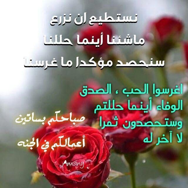 عبارات صباحية رائعة كلام صباح الخير موقع حصري Good Morning Gif Romantic Love Quotes Islamic Phrases