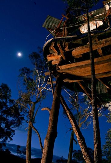 Welcome to the Secret Treehouse - a place where you can live with birds high in the forest tree-tops. The Treehouse has simply stunning views of the deep Bowen's Creek Gorge and rare Blue Mountains rainforest. The Tree House is set to impress both new and returning guests. This one-of-a-kind cabin comes complete with spa, kitchenette, Queen bed, fireplace and floor to ceiling windows to provide an amazing and unique Blue Mountains experience.