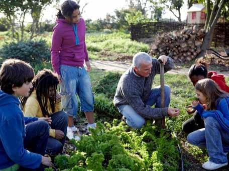 aloo gobi school kidsback to schoolkid gardenschool gardensplayground - Vegetable Garden Ideas For Kids
