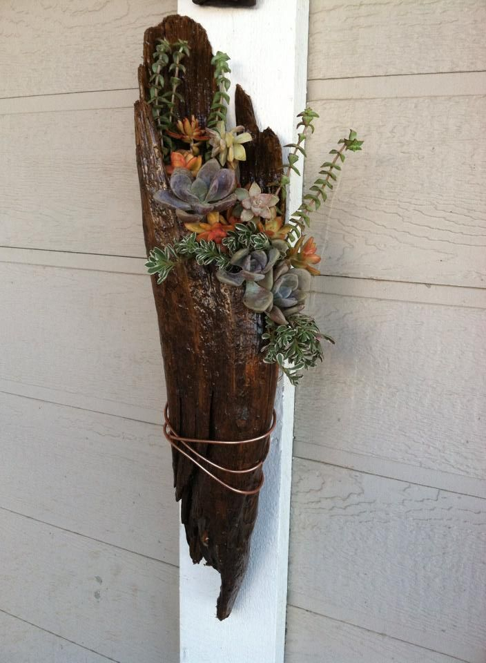 Succulents in wood planter by All About Succulents