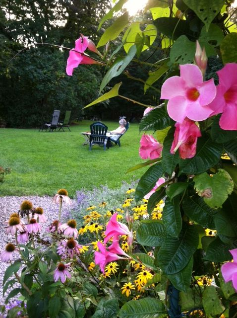 The gardens are abloom with color this year. The perfect place to relax.