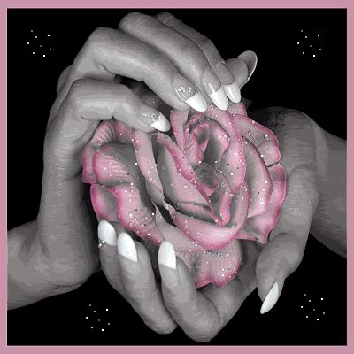 Výsledek obrázku pro gify růže