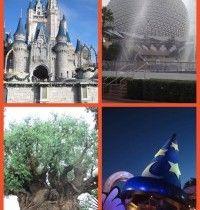 Toddler Can Do's at Walt Disney World Parks