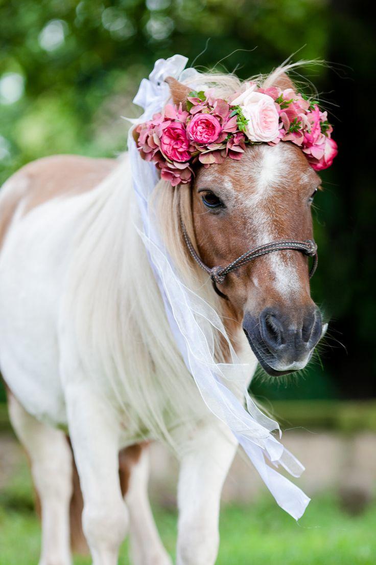Beerenfarbige Augusthochzeit in Dresden von timjudi photography #flowercrown #pink #flowers #horse #wedding