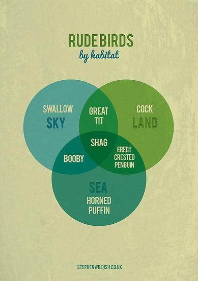 Rude Birds Venn Diagram: Habitat, Wildish Rudebirds, Rude Birds, Rudebirds Chart, Funny, Stephen Wildish, Things, Infographics, Friend Chart