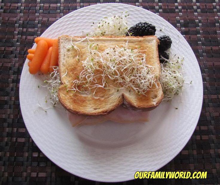 Easy healthy recipe: Butterball Turkey, Tomato & Cucumber Sandwich