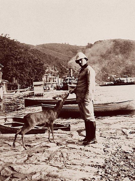 tahminen 1913 yılında Anadolu Kavağında bir Osmanlı askerinin elinden yemlenen karaca şimdi bıldırcın bile bulmak zor