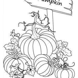 parat fall coloring pages - photo#43