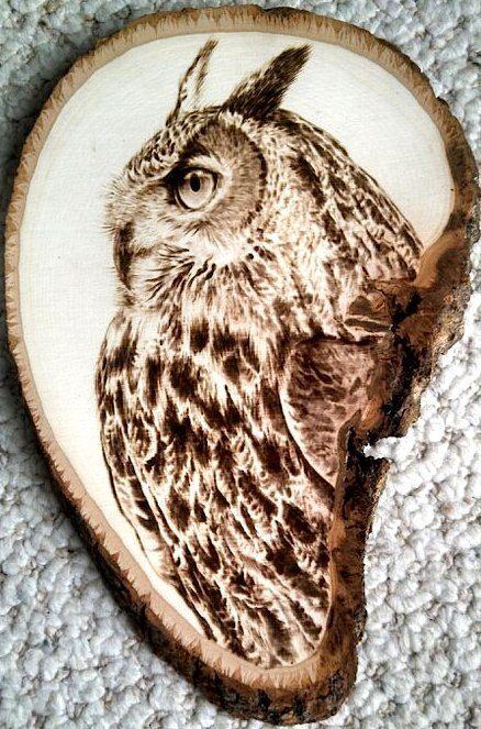 Hand-Made Owl Woodburn on Bark-Rimmed Basswood