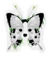 I want a papillon tattoo made out of this!
