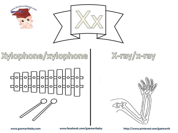 Smart Baby - Coloring the alphabet - letter X x