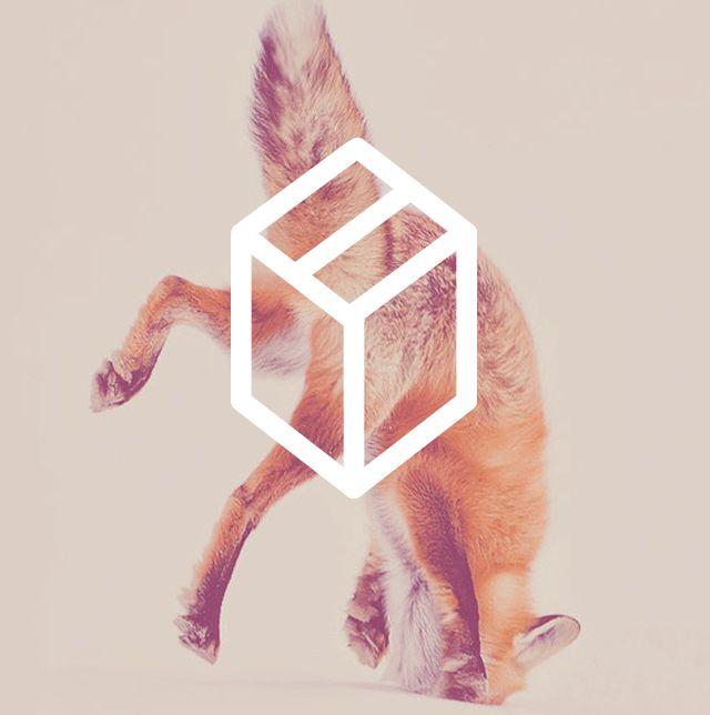 FOXBOX logo evolution
