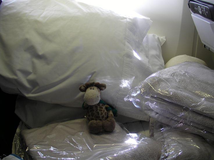 How many blankets does one small giraffe need? #luxurytravel @flyairnz #airnewzealand #draft #jennievickers