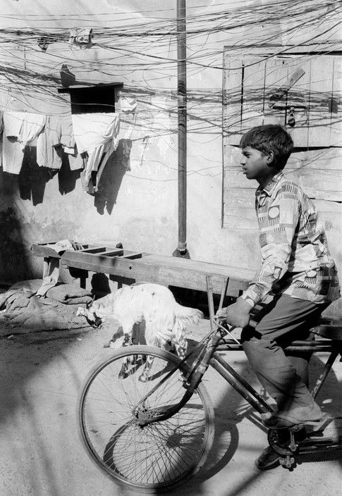 John Vink  INDIA. Delhi. 9/12/1996: Rickshaw wallah passes in front of a goat and telephone lines in the Jamiat Masjid area.