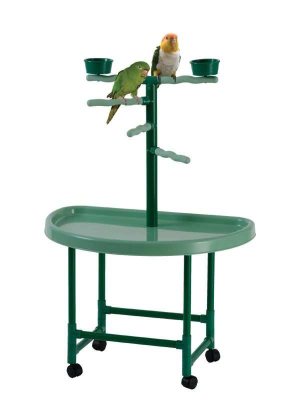 163 best images about pvc parrot stands and gyms on pinterest pvc pipes plays and parrot play. Black Bedroom Furniture Sets. Home Design Ideas