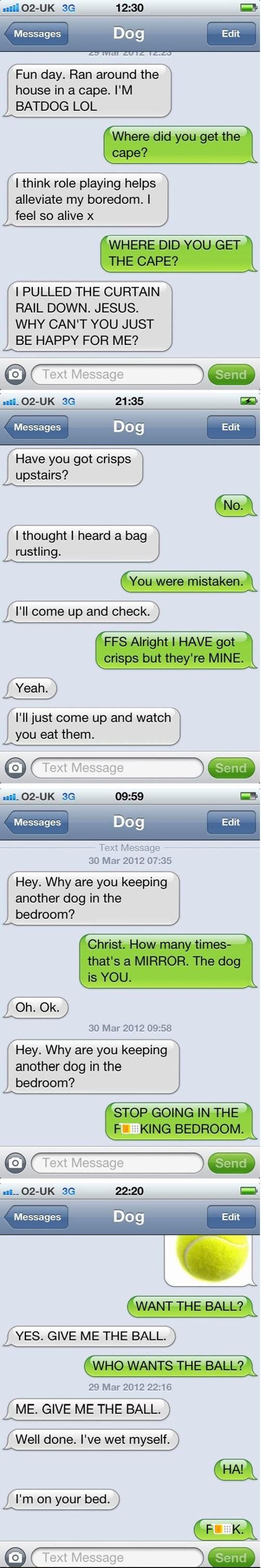 Just Texting My Dog...