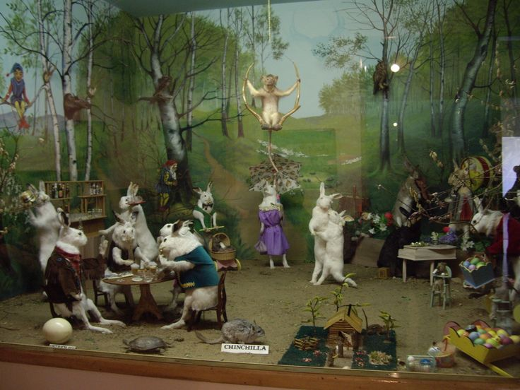 'Bunnyland' at the Fuchs wildlife exhibit at the Barr Colony Heritage  Cultural Centre in Lloydminster, SK. #taxidermy