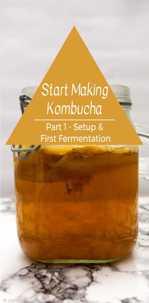 Learn how to start making kombucha yourself. This post covers how to get started and go through the first fermentation for beginners with kombucha