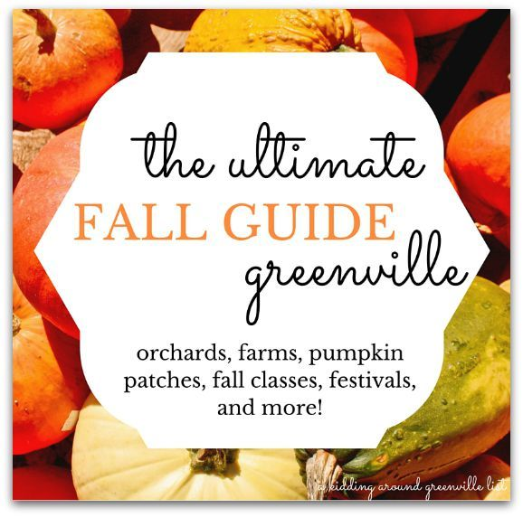 Everything you need to have an awesome fall in Greenville is in this list!