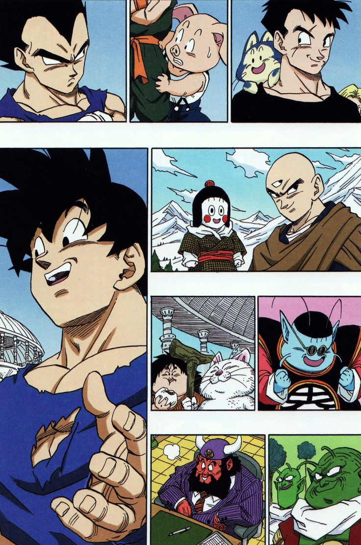 dragon ball familyby akira toriyamasource scan from