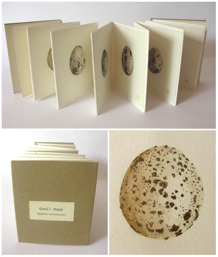 Quail Eggs (Bygone Collection) > Eleanor Phillips // An artist book recording twelve now discarded quail eggs.  [8.5x10cm, coloured pencil, ink, watercolour, mixed paper, 2012]