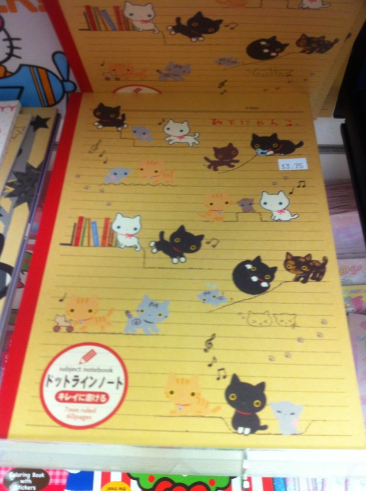 This other cute kitty notebook
