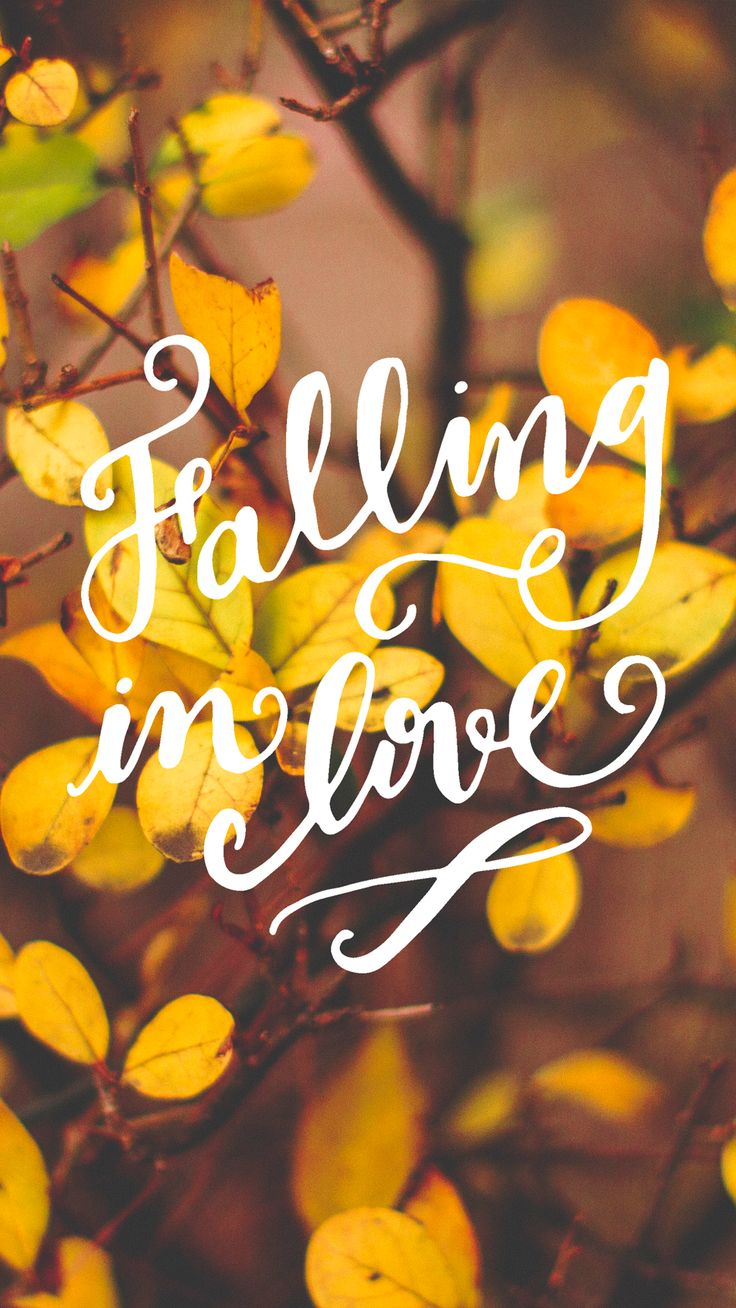 Falling in Love - Tap to see more top colourful Autumn abstract wallpapers! - mo... | Abstract HD Wallpapers 2
