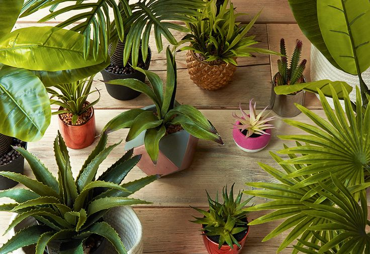 Fausses plantes artificielles organisation 2017 primark déco maison décoration intérieur