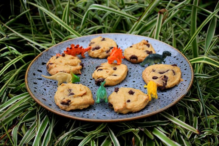 Chickpea choc chip cookies