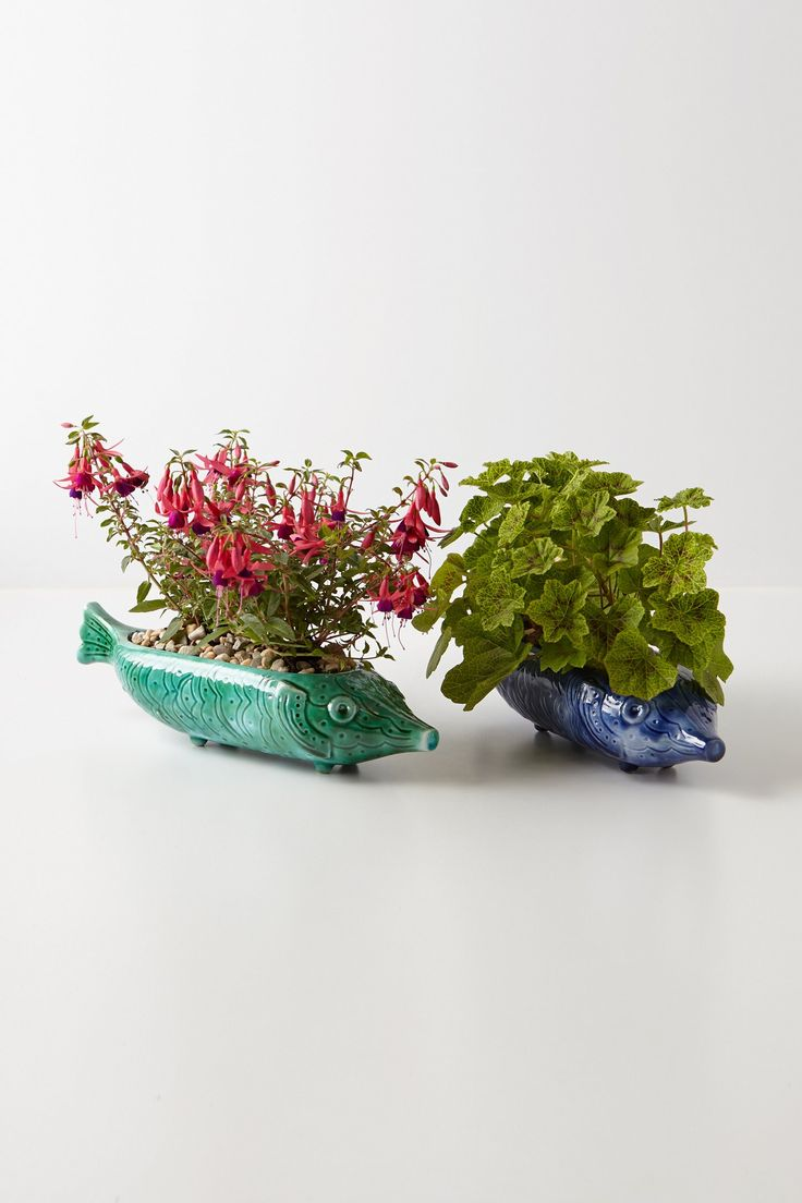 Blue & green Barracuda Pots from Anthropologie are just the cutest  centerpieces