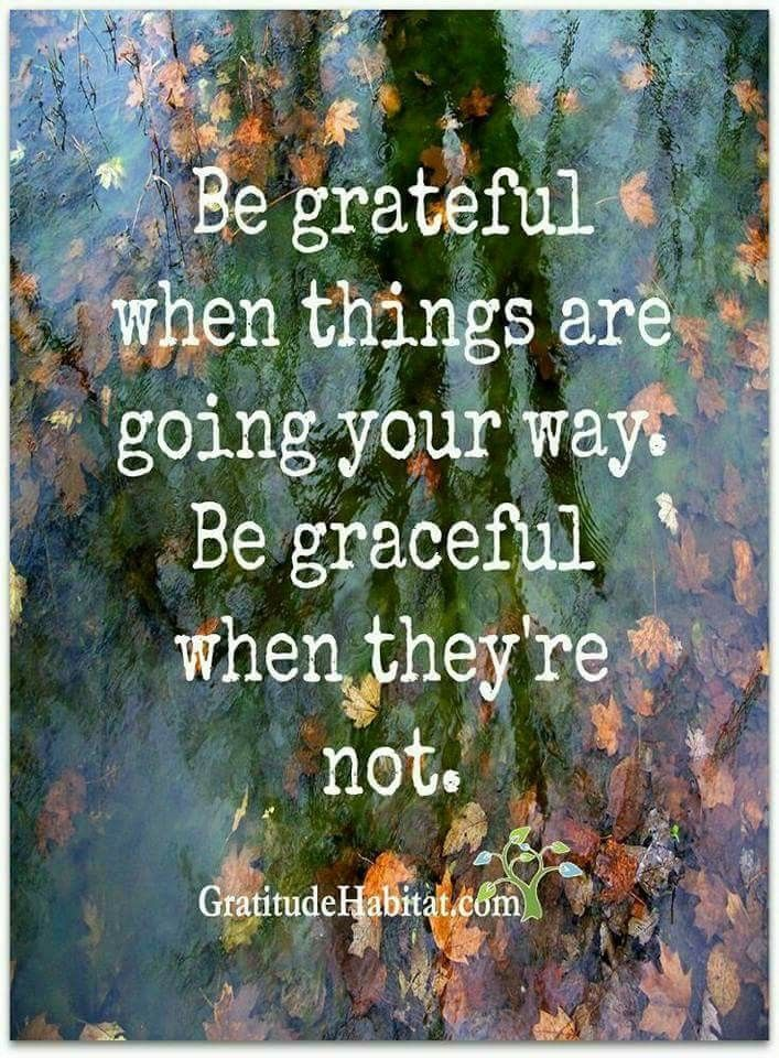 Be grateful when things are going your way. be graceful when they're not.