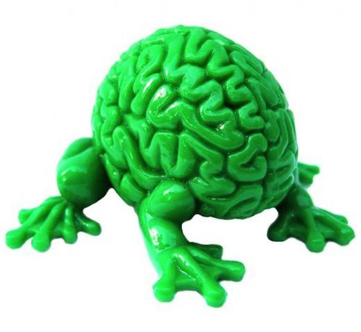 Cognitive enhancement drugs student photo 5