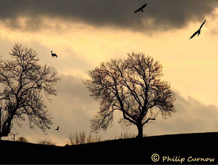 Award- winning Aberystwyth Sunset photograph