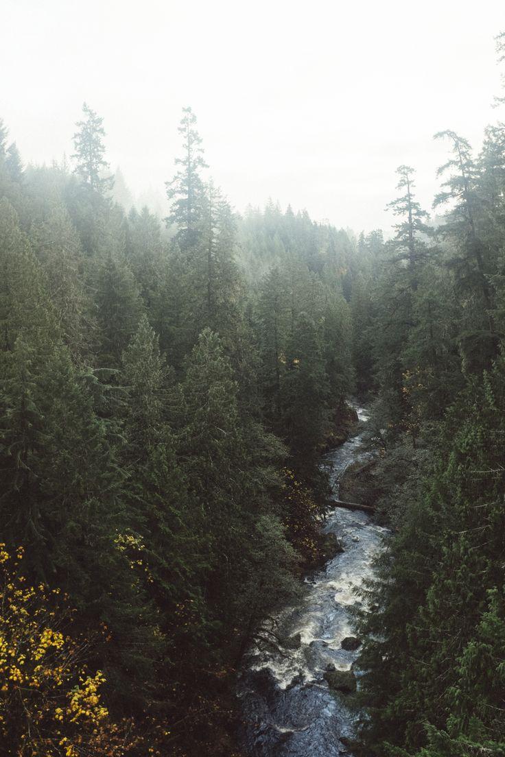 Cowichan Kinsol Trestle -  River  Explore Vancouver Island, British Columbia Island General Shoppe Blog