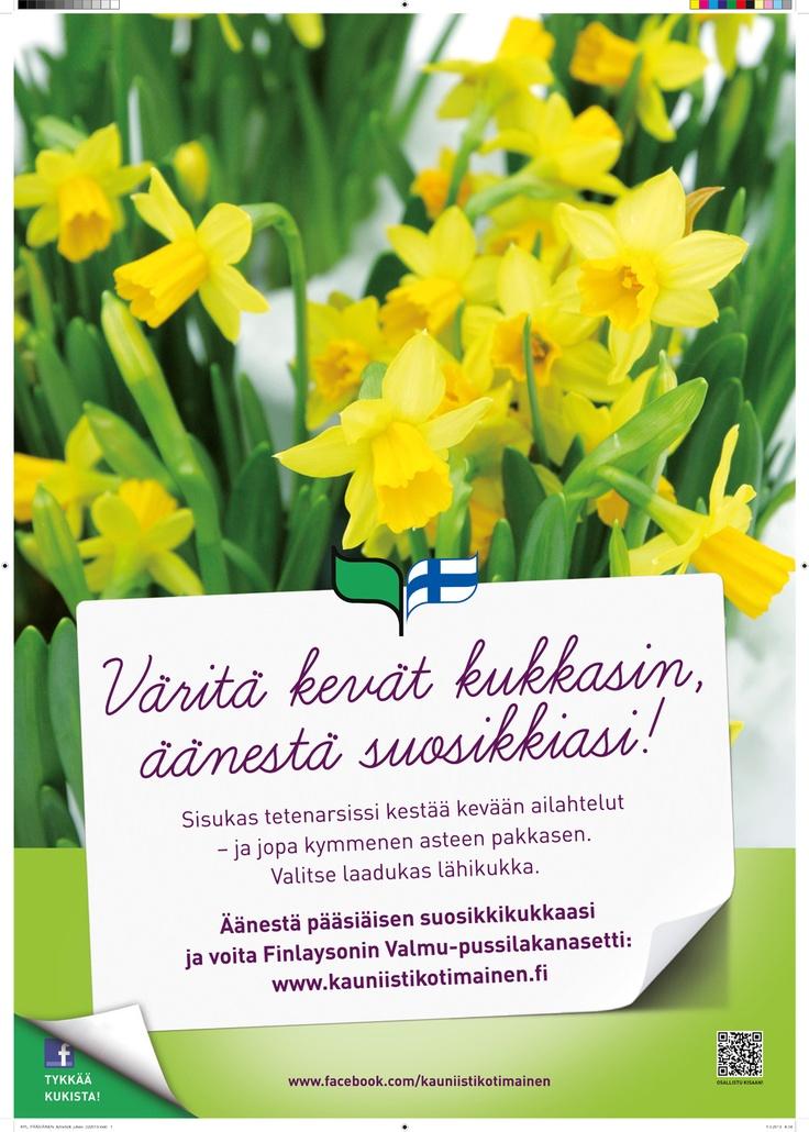 Pääsiäinen 2013 - Väritä kevät kukkasin, äänestä suosikkiasi!