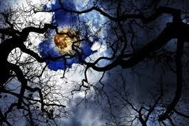 Image result for samhain traditions