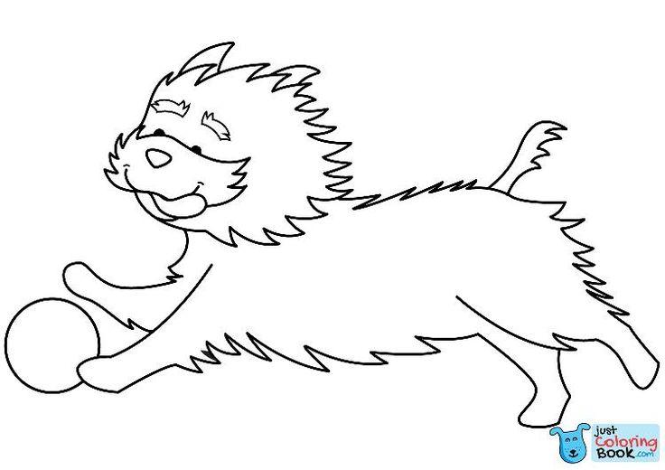 lustiger yorkshire terrier spielt ball ausmalbilder zum ausdrucken   – Dog Coloring Pages