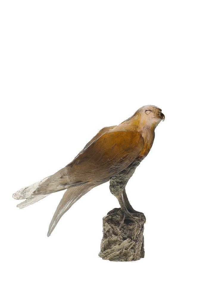 Saker Hawk by Madeleine Van der Knoop 375EX — Daum Nancy