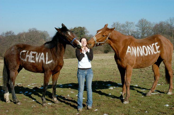 Deux chevaux pour le prix d'un, merci ChevalAnnonce ! #ca #cheval #concours #chevalannonce