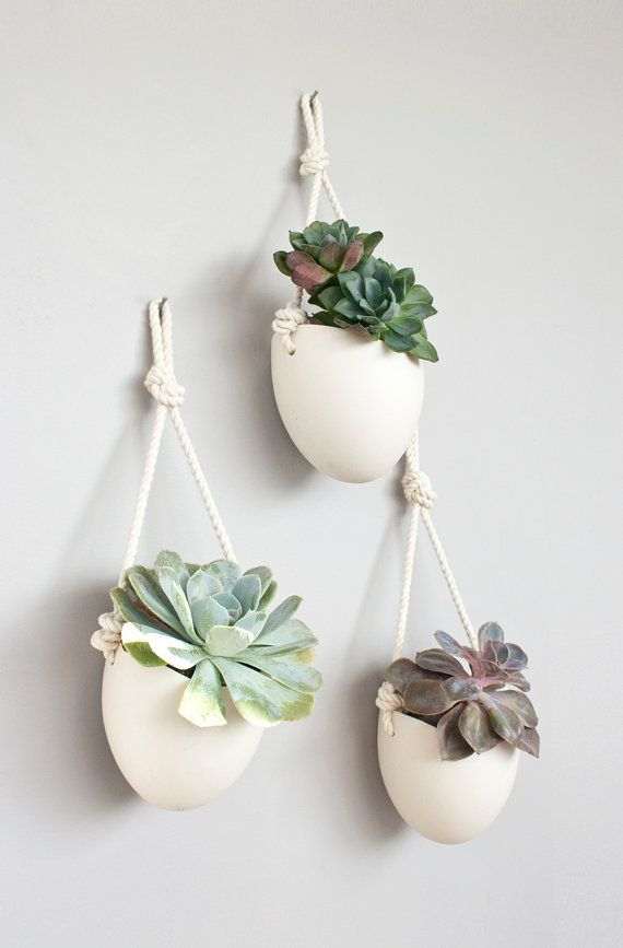 ** white spora planters with no drainage holes will ship out Dec 15th, ones with drainage holes are in stock** Add some vertical greenery to any