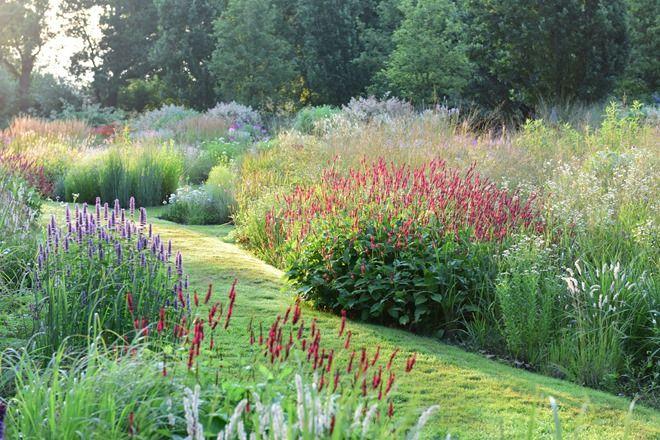 1000 images about puutarha kukkapenkkej ja niittyj for Cottage garden design zone 5