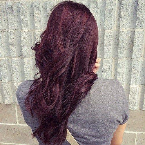 Best 25+ Mahogany hair colors ideas on Pinterest ...   500 x 500 jpeg 72kB