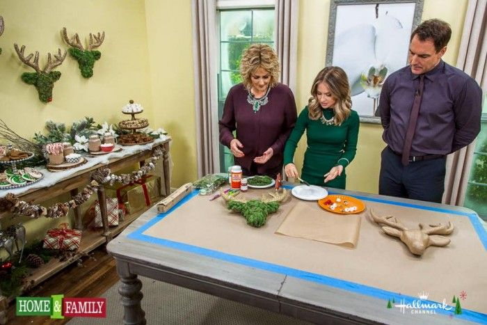 Today on the Hallmark Channel's home and family show we are celebrating Christmas! I am showing how to create a cozy hot cocoa bar that is a rustic chic woodland theme. By adding a few easy DIY's you could make this really special tablescape at home in time for Christmas, because who doesn't like hot …