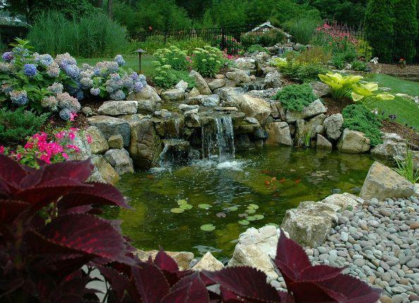 15 best images about pond maintenance on pinterest for Backyard pond maintenance