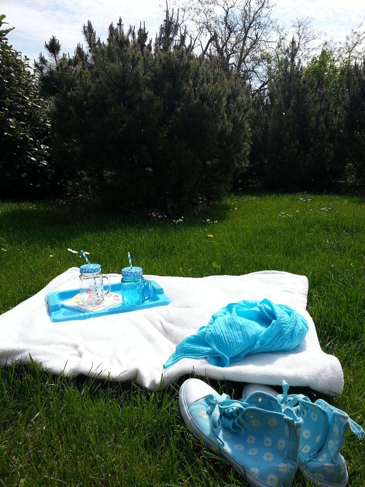 Piknik kékben
