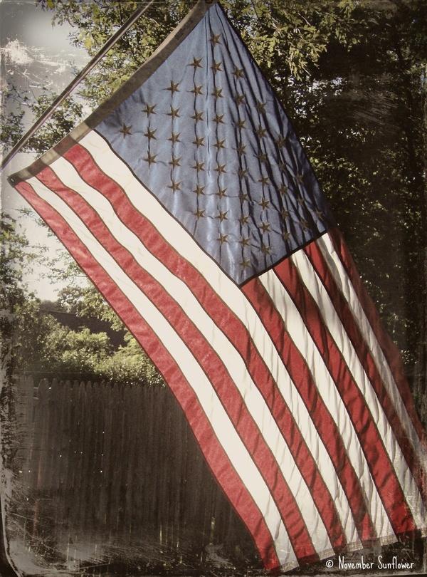 flag protocol veterans day